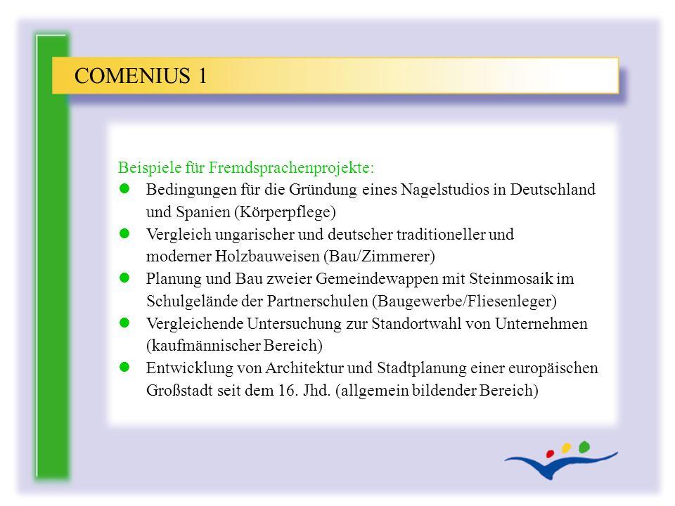 COMENIUS 1 Beispiele für Fremdsprachenprojekte: