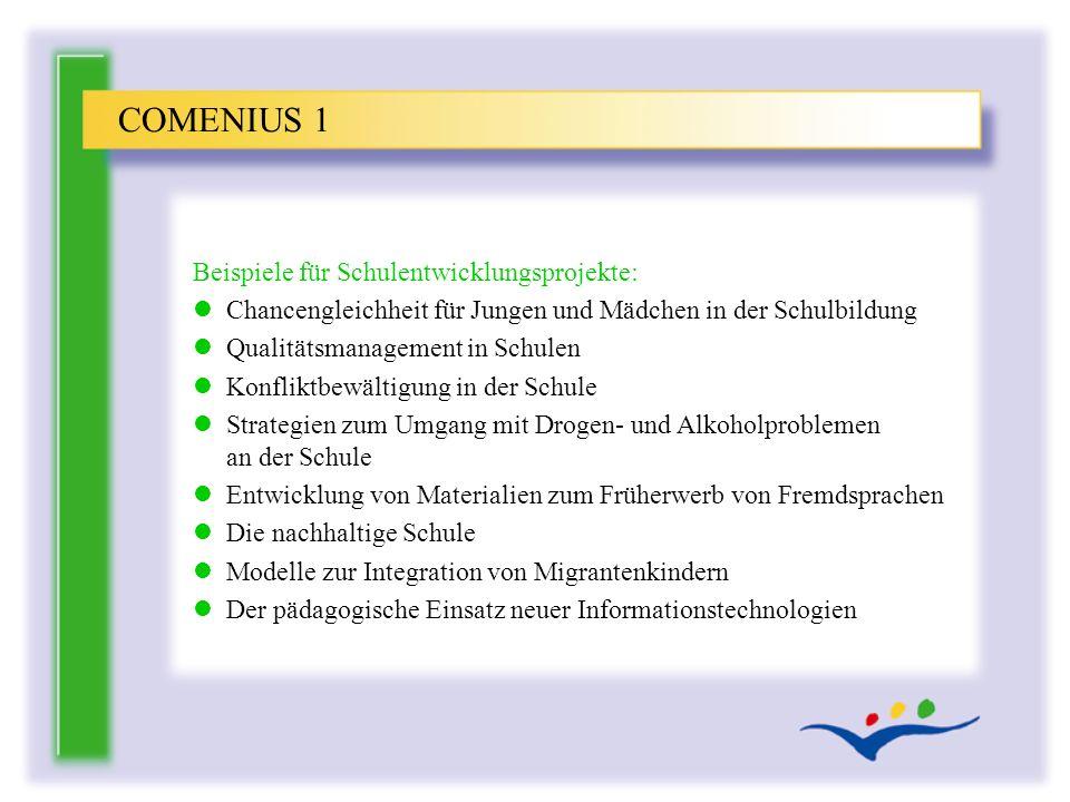 COMENIUS 1 Beispiele für Schulentwicklungsprojekte: