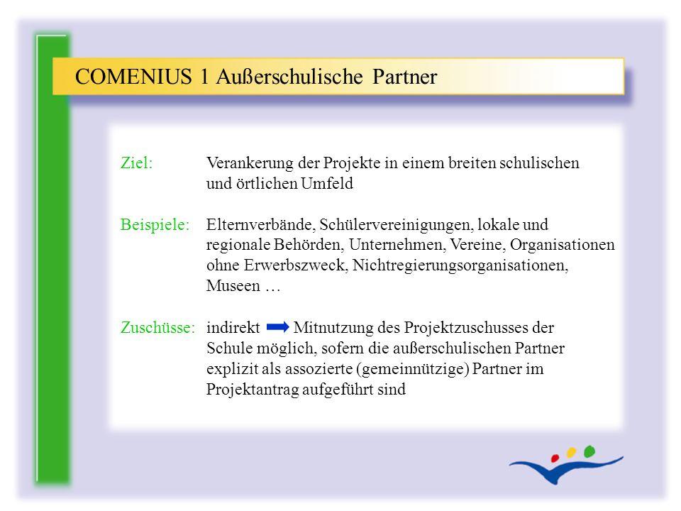 COMENIUS 1 Außerschulische Partner