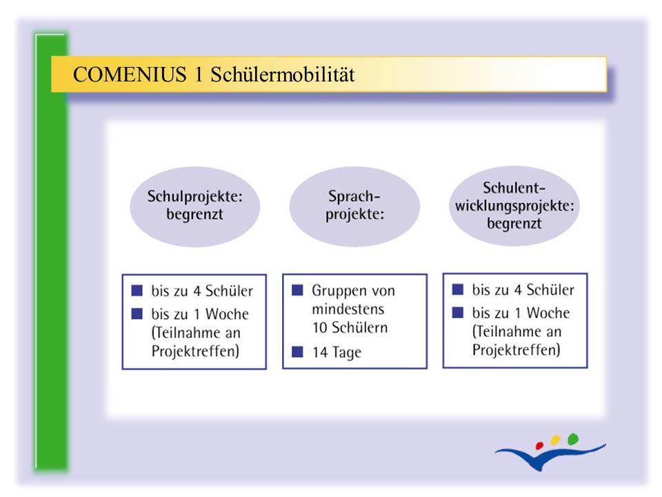 COMENIUS 1 Schülermobilität