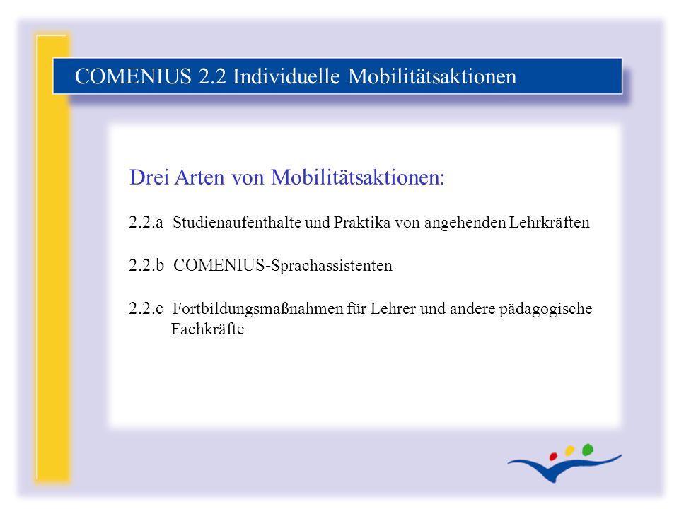 COMENIUS 2.2 Individuelle Mobilitätsaktionen