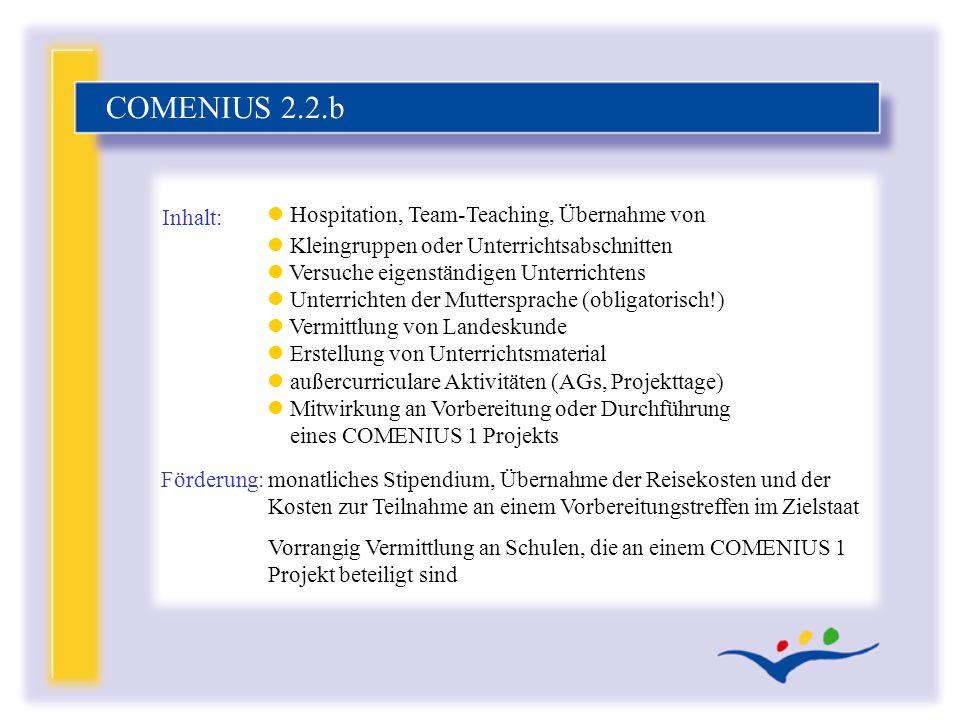 COMENIUS 2.2.b Hospitation, Team-Teaching, Übernahme von