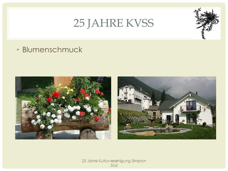 25 Jahre Kulturvereinigung Simplon Süd
