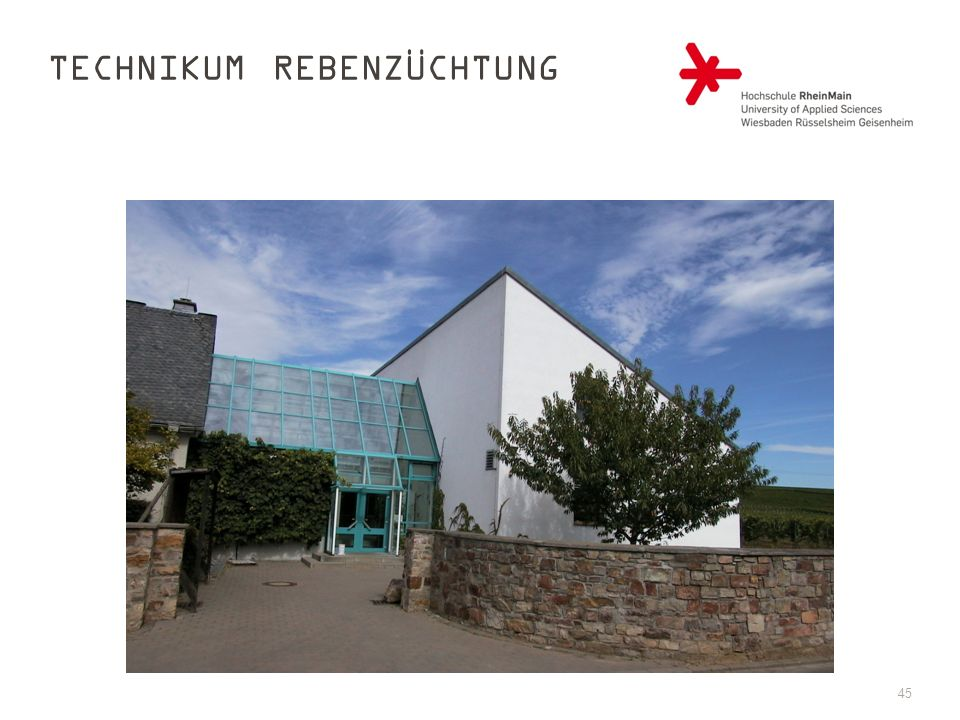 Technikum Rebenzüchtung