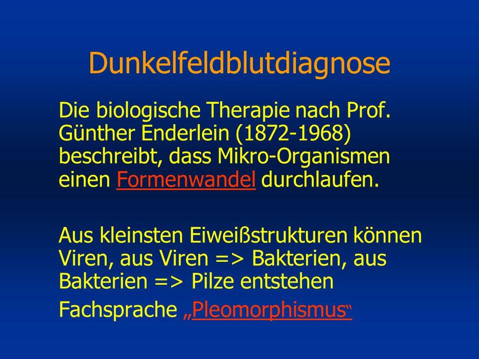 Dunkelfeldblutdiagnose