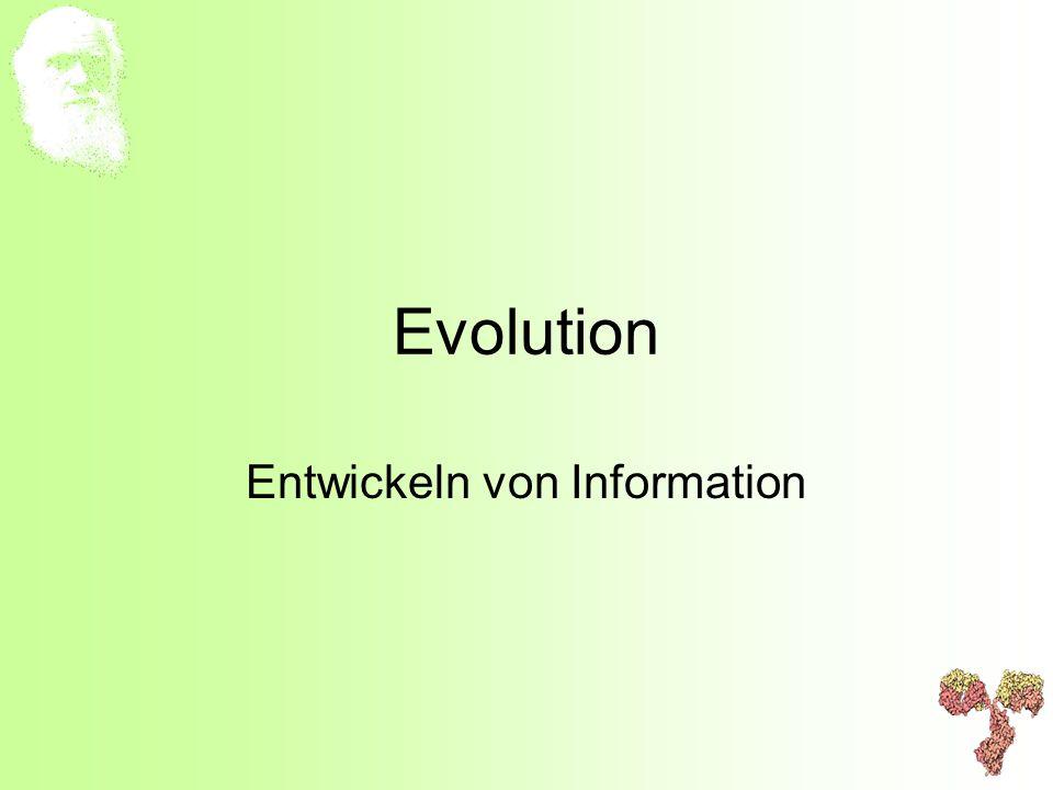 Entwickeln von Information