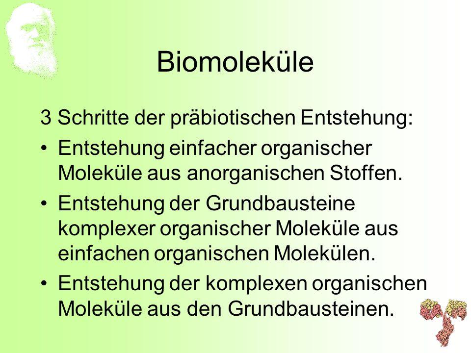Biomoleküle 3 Schritte der präbiotischen Entstehung: