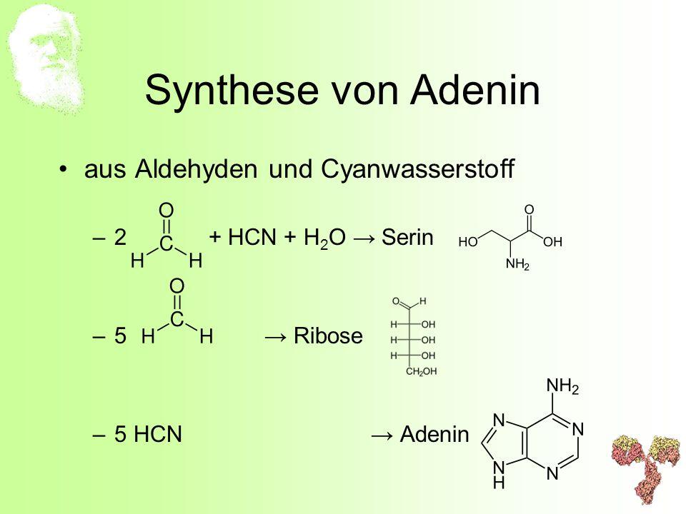Synthese von Adenin aus Aldehyden und Cyanwasserstoff