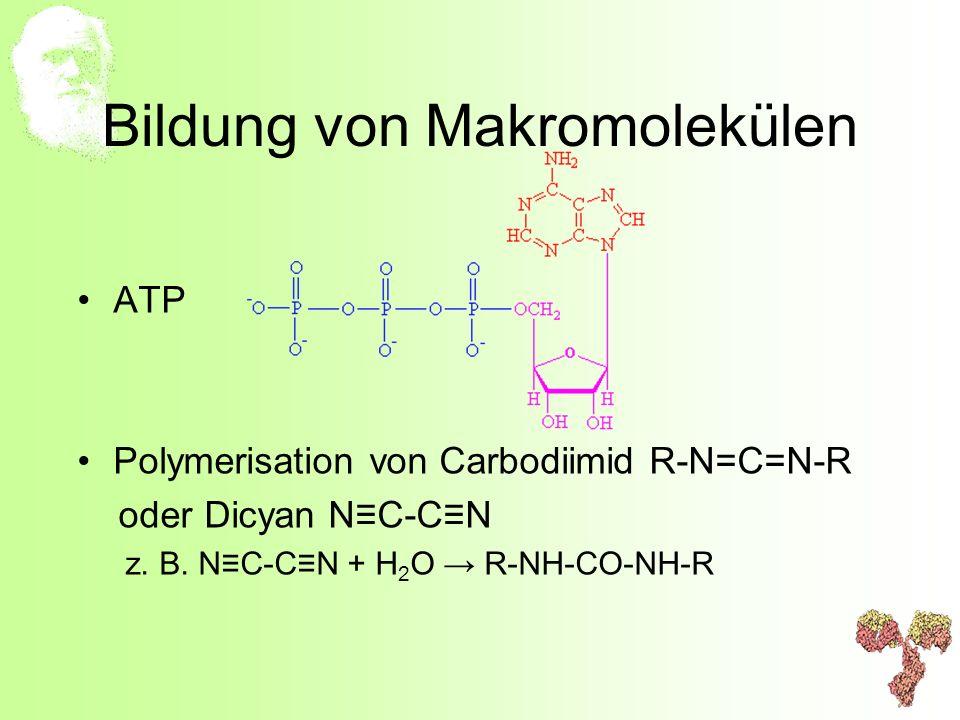 Bildung von Makromolekülen