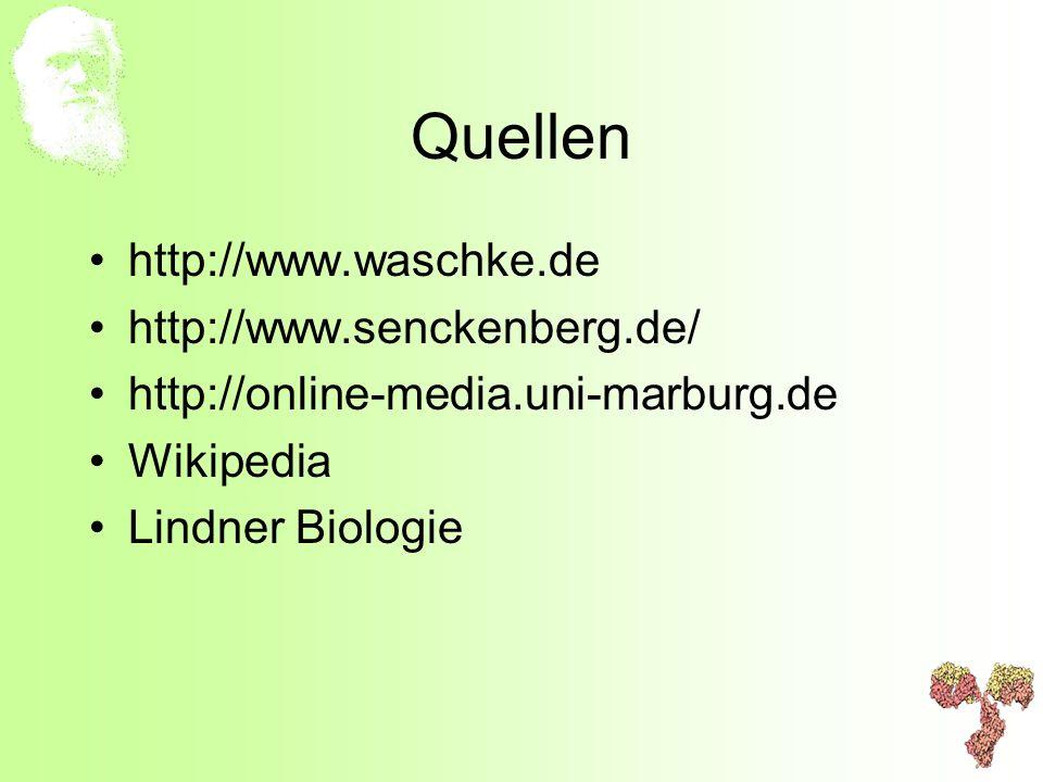 Quellen http://www.waschke.de http://www.senckenberg.de/