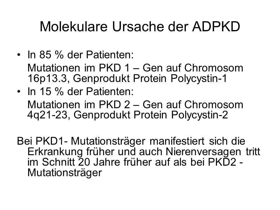 Molekulare Ursache der ADPKD
