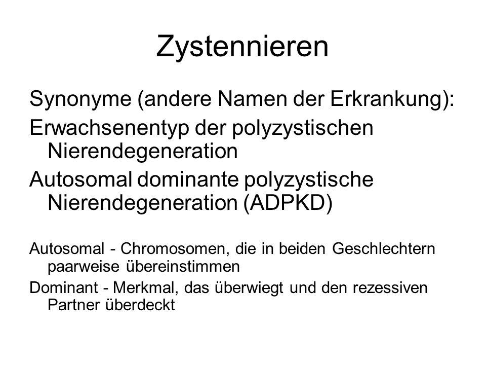 Zystennieren Synonyme (andere Namen der Erkrankung):