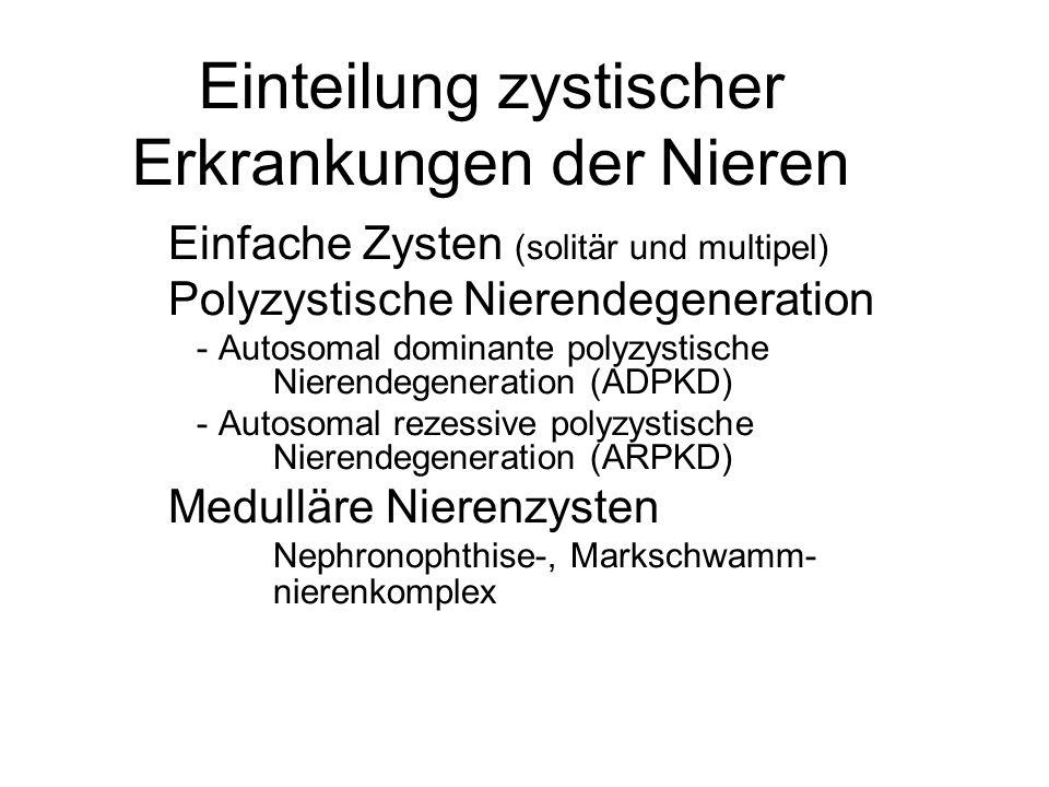 Einteilung zystischer Erkrankungen der Nieren