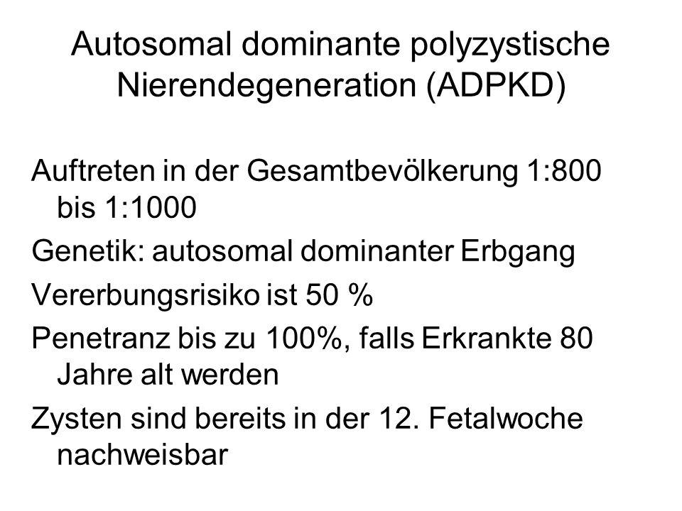 Autosomal dominante polyzystische Nierendegeneration (ADPKD)