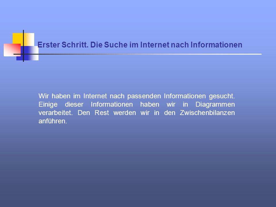 Erster Schritt. Die Suche im Internet nach Informationen