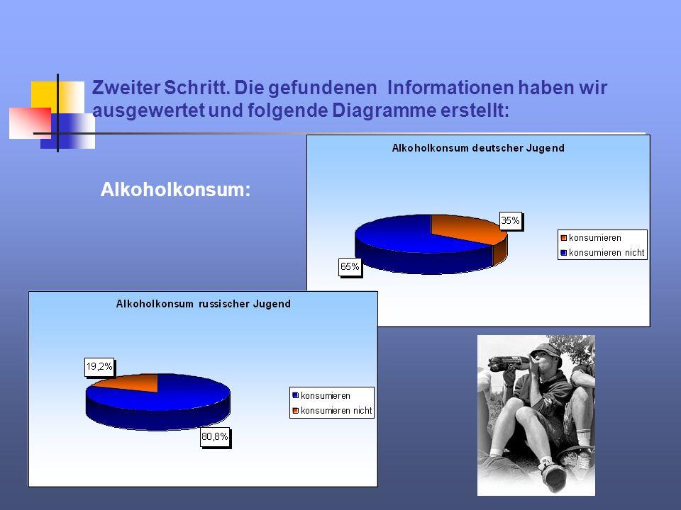 Zweiter Schritt. Die gefundenen Informationen haben wir ausgewertet und folgende Diagramme erstellt: