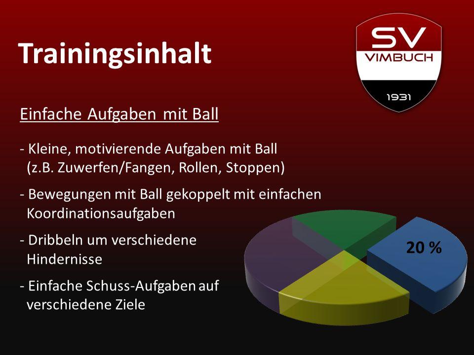 Trainingsinhalt Einfache Aufgaben mit Ball 20 %