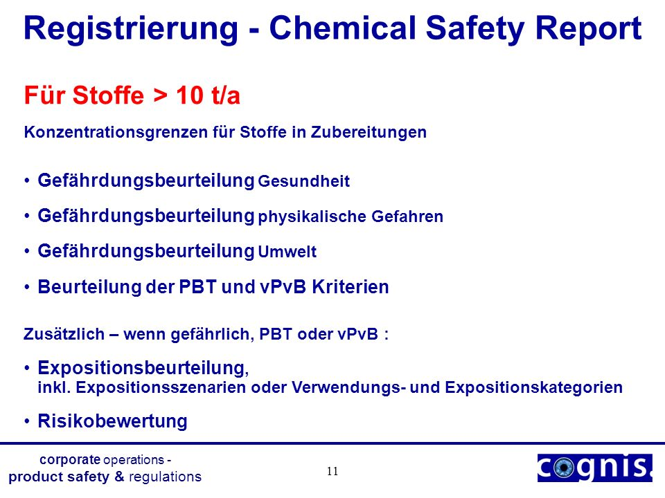 Registrierung - Chemical Safety Report