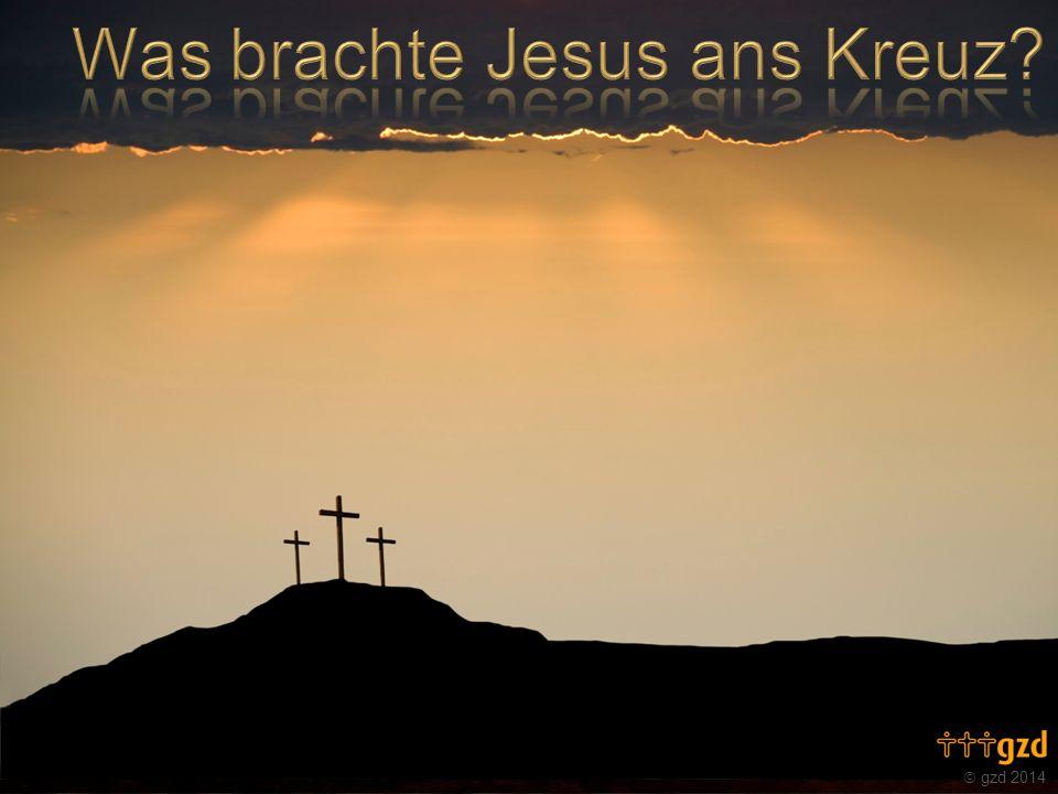 Was brachte Jesus ans Kreuz