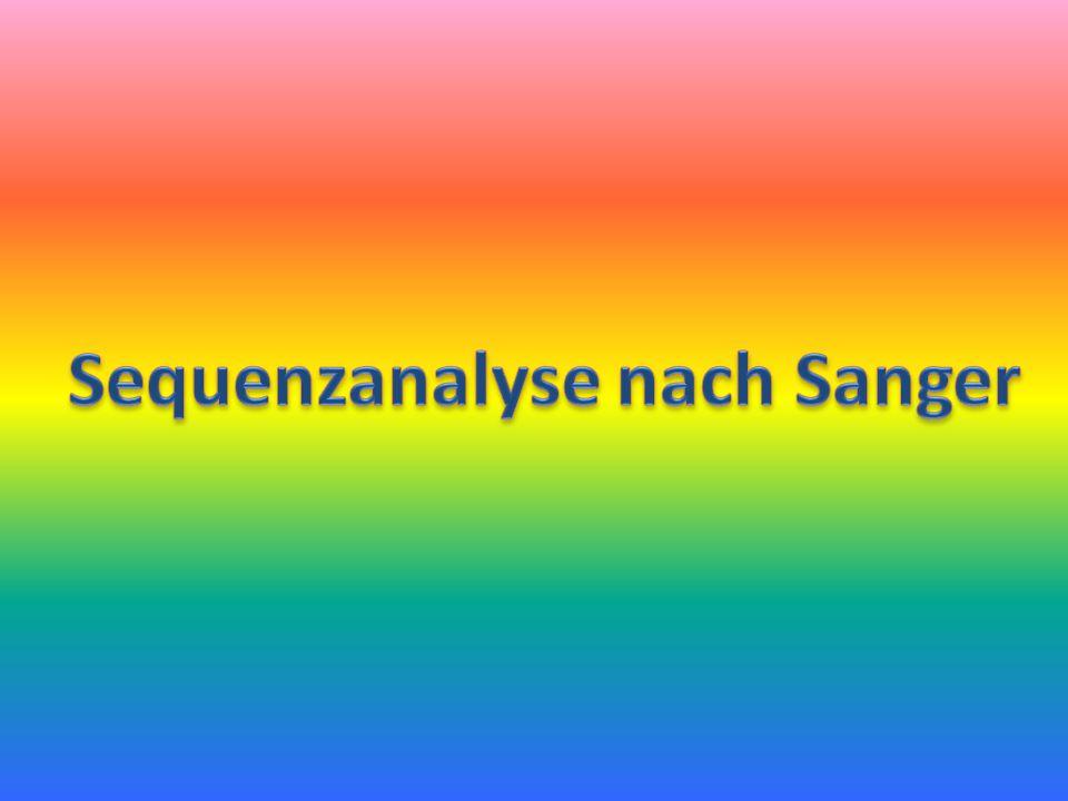 Sequenzanalyse nach Sanger