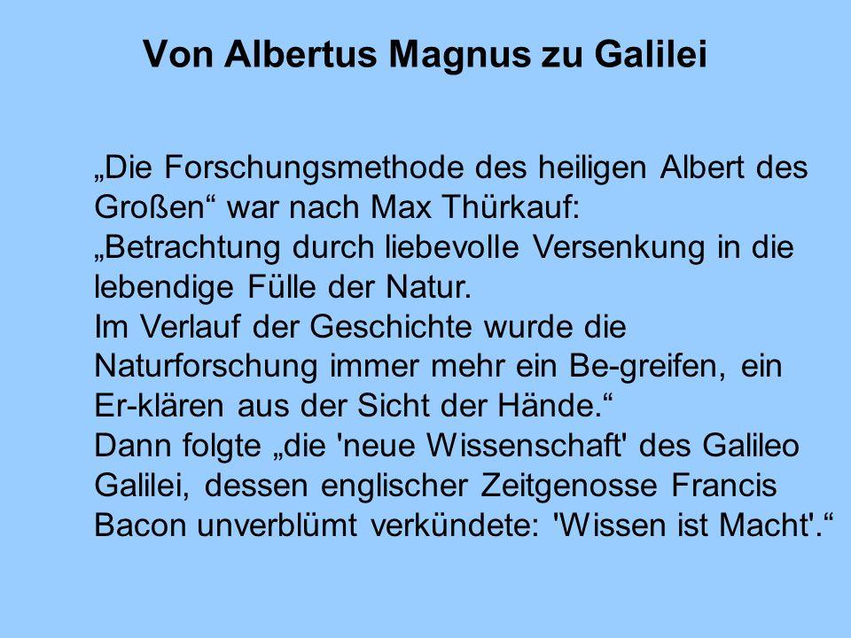 Von Albertus Magnus zu Galilei