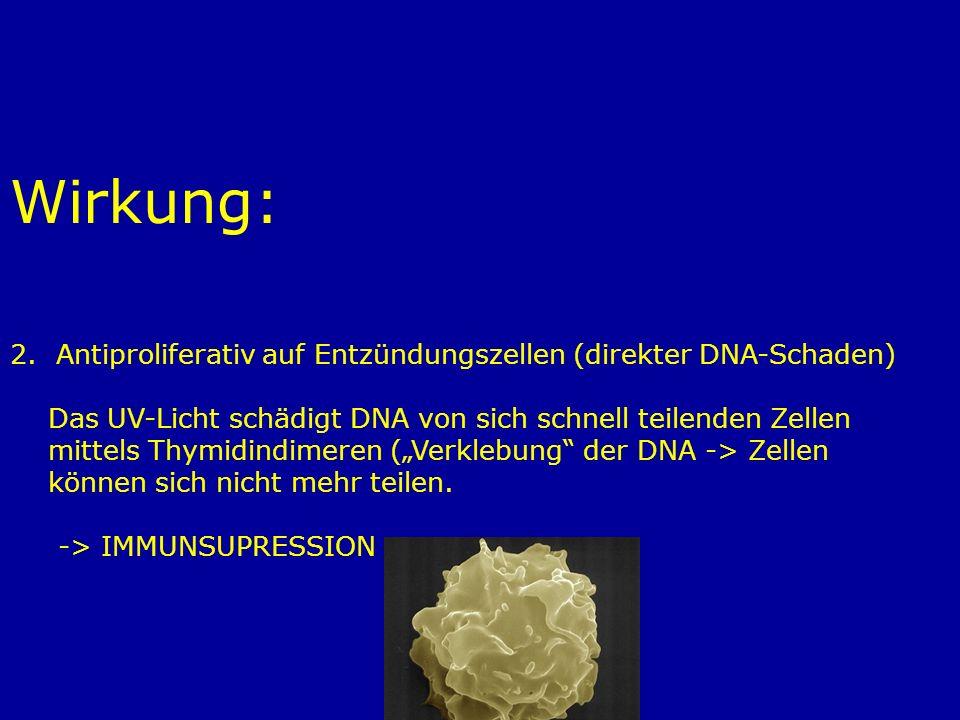 Wirkung: 2. Antiproliferativ auf Entzündungszellen (direkter DNA-Schaden) Das UV-Licht schädigt DNA von sich schnell teilenden Zellen.