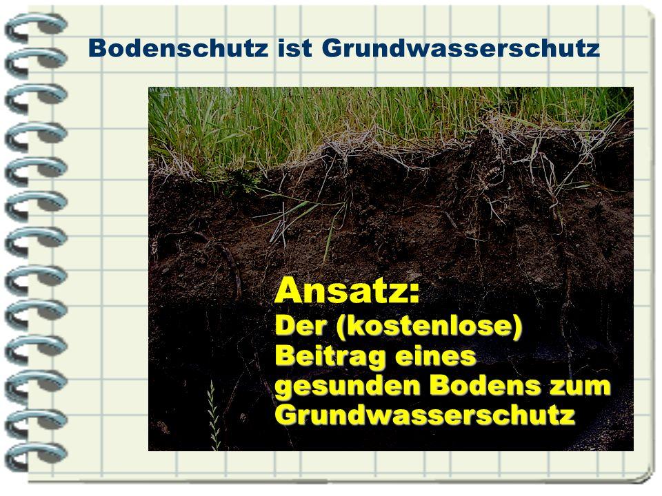 Bodenschutz ist Grundwasserschutz