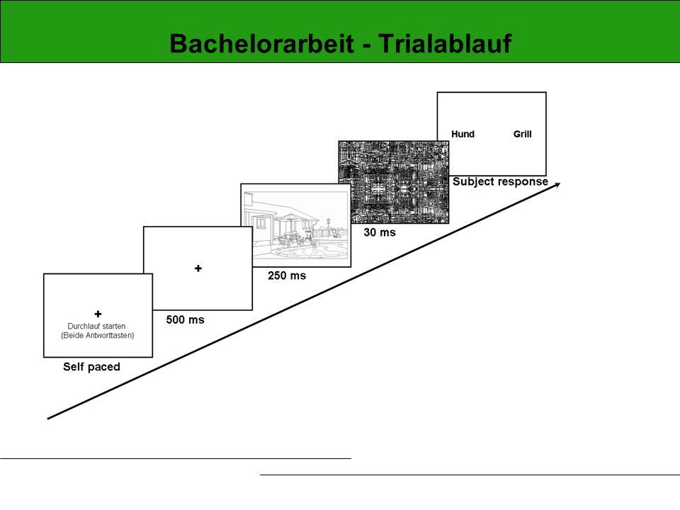 Bachelorarbeit - Trialablauf