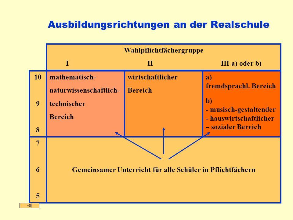 Ausbildungsrichtungen an der Realschule