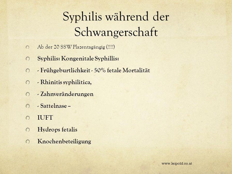 Syphilis während der Schwangerschaft