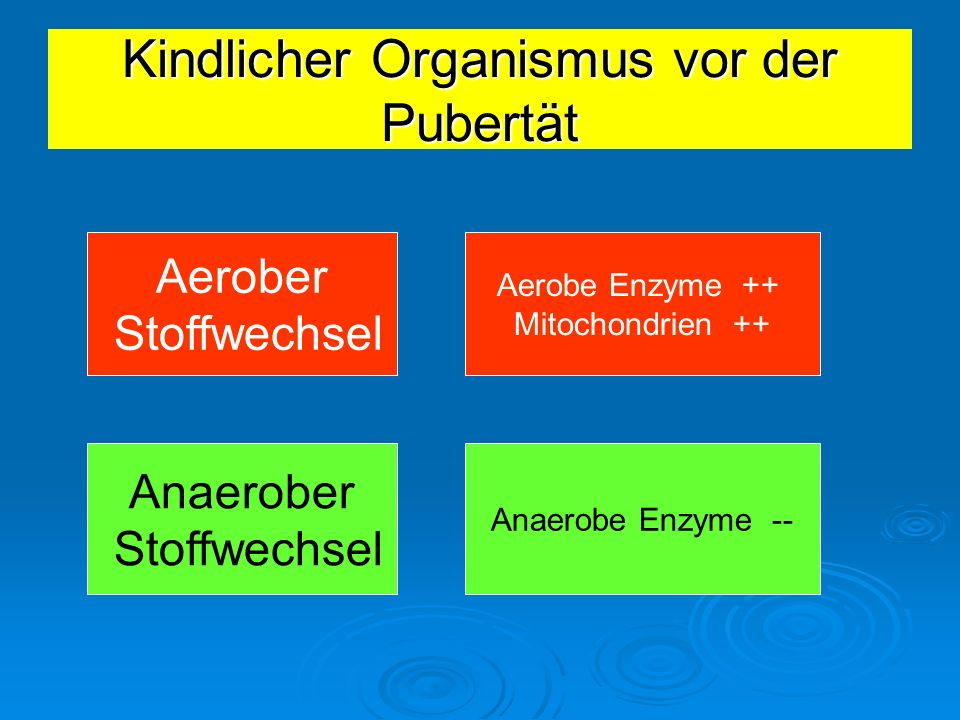 aerober anaerober stoffwechsel
