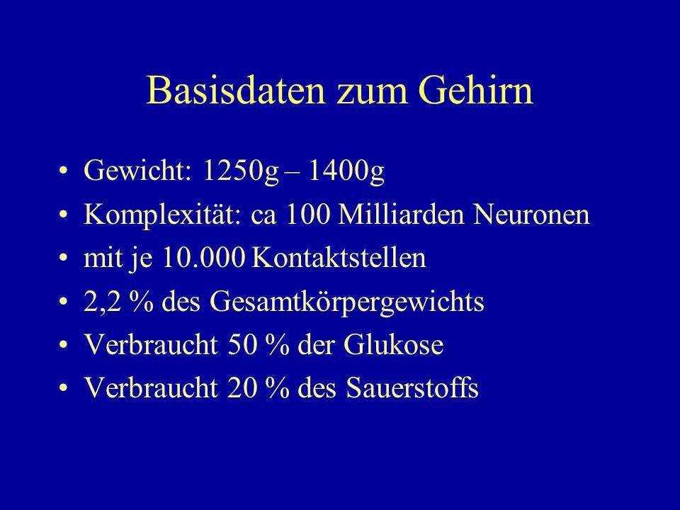 Basisdaten zum Gehirn Gewicht: 1250g – 1400g