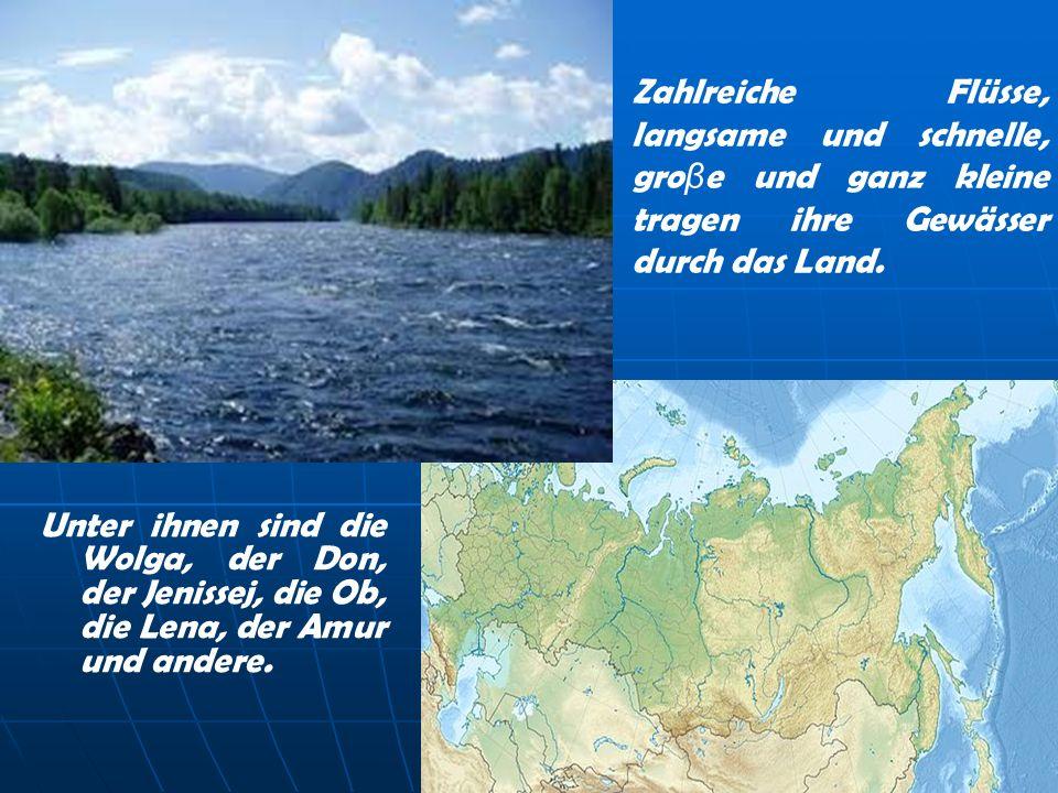 Zahlreiche Flüsse, langsame und schnelle, groβe und ganz kleine tragen ihre Gewässer durch das Land.
