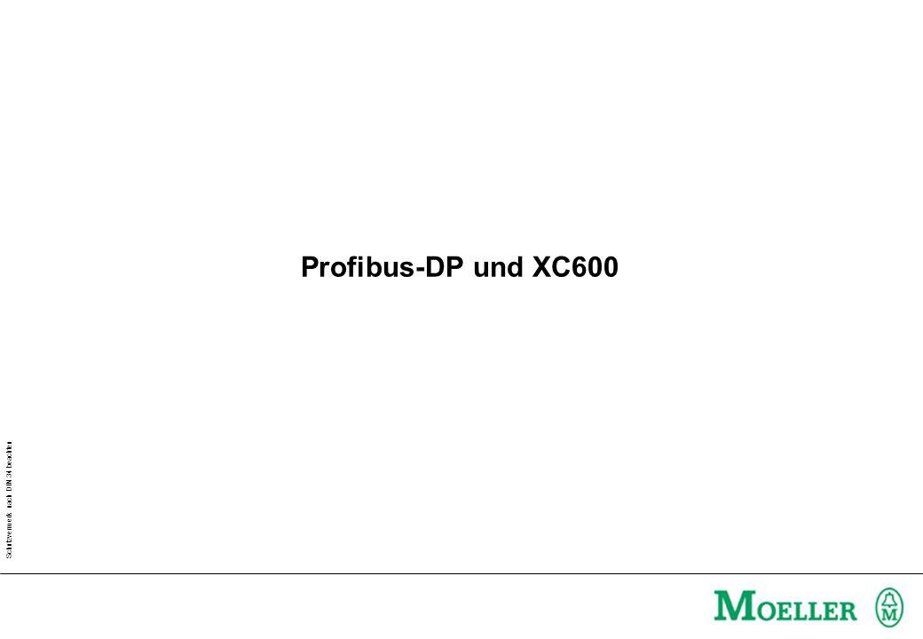 Profibus-DP und XC600 Klicken Sie, um die Formate des Vorlagentextes ...