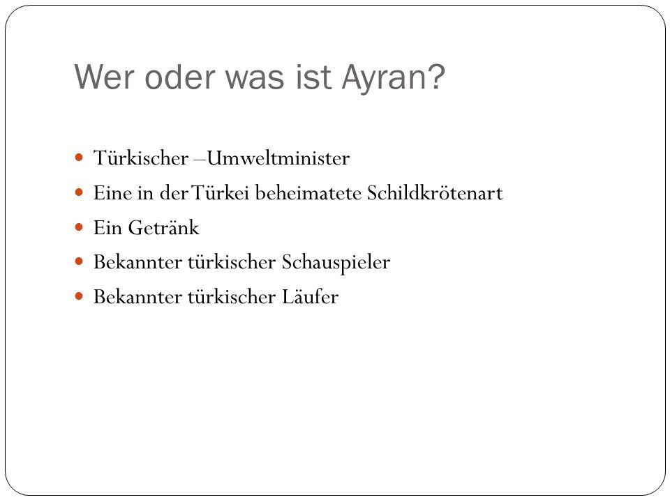 Wer oder was ist Ayran Türkischer –Umweltminister