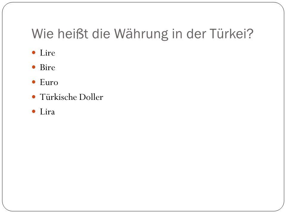 Wie heißt die Währung in der Türkei