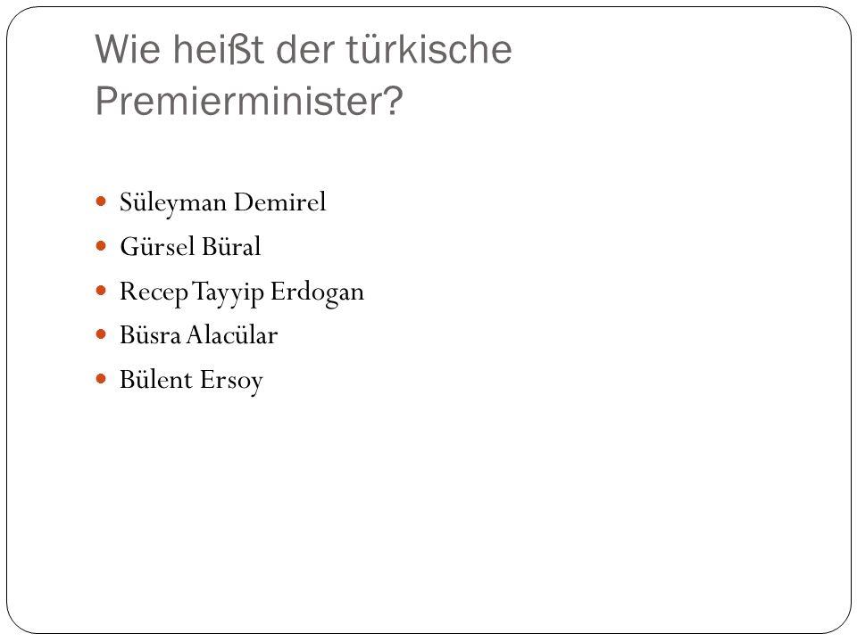 Wie heißt der türkische Premierminister
