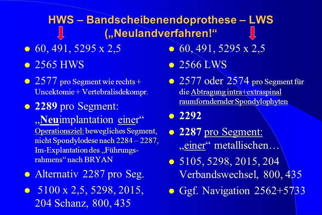 """HWS – Bandscheibenendoprothese – LWS (""""Neulandverfahren!"""