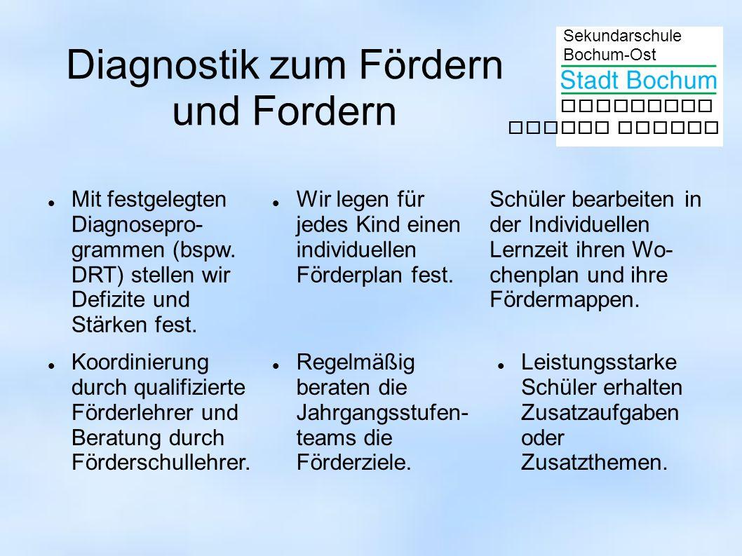 Diagnostik zum Fördern und Fordern