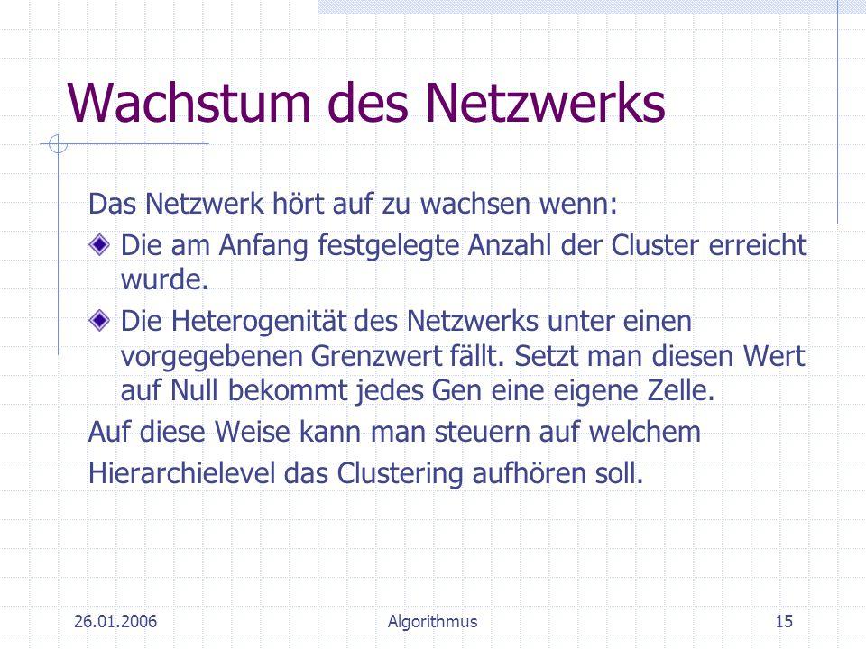 Wachstum des Netzwerks