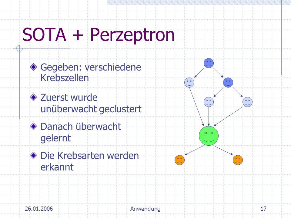 SOTA + Perzeptron Gegeben: verschiedene Krebszellen