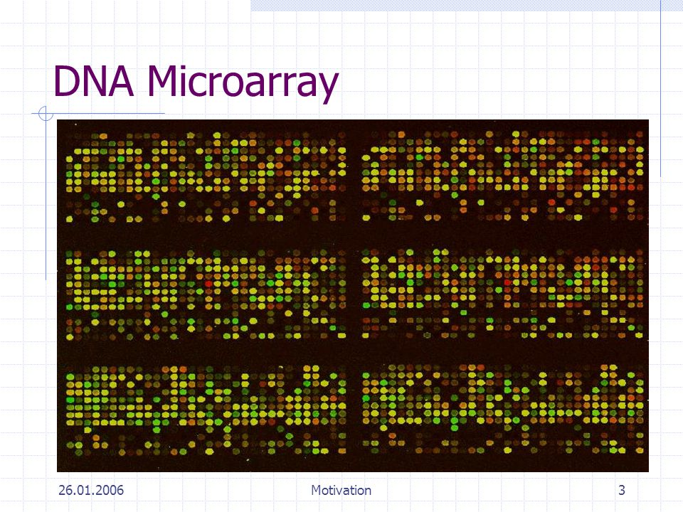 DNA Microarray 26.01.2006 Motivation