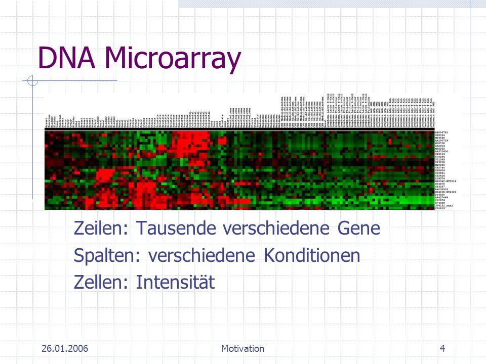 DNA Microarray Zeilen: Tausende verschiedene Gene