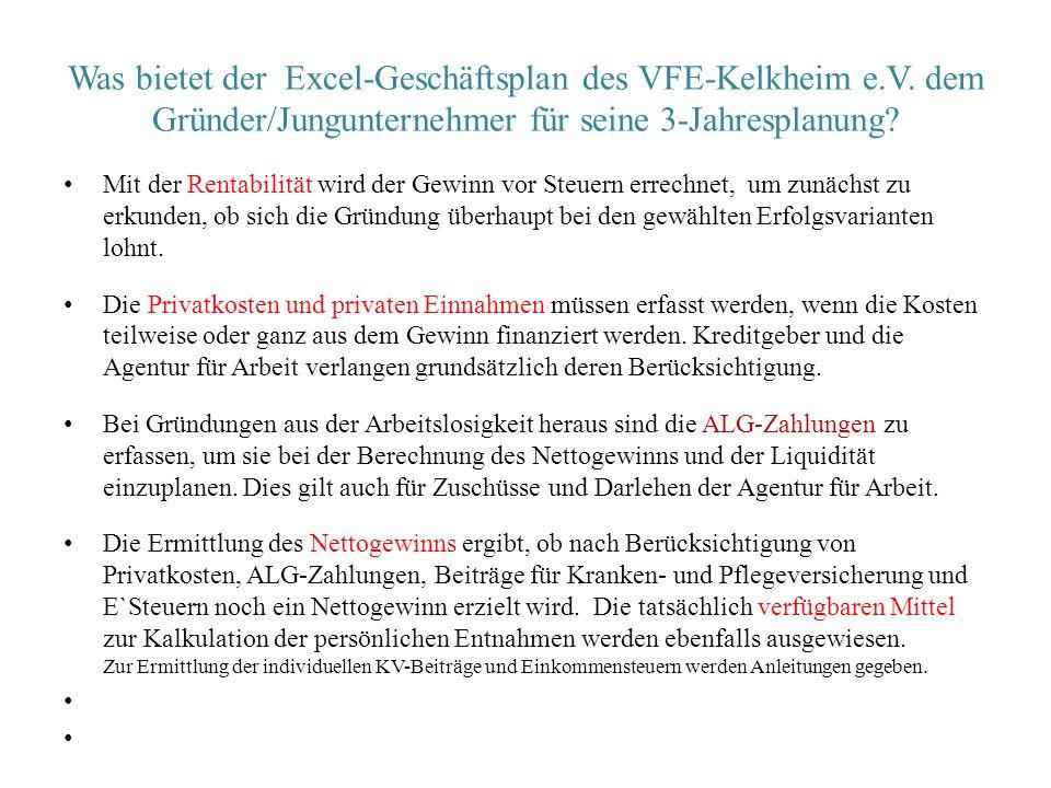 Was bietet der Excel-Geschäftsplan des VFE-Kelkheim e. V