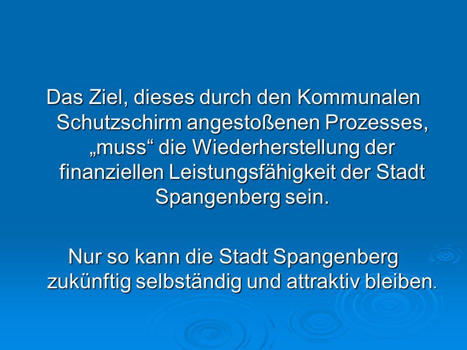 """Das Ziel, dieses durch den Kommunalen Schutzschirm angestoßenen Prozesses, """"muss die Wiederherstellung der finanziellen Leistungsfähigkeit der Stadt Spangenberg sein."""