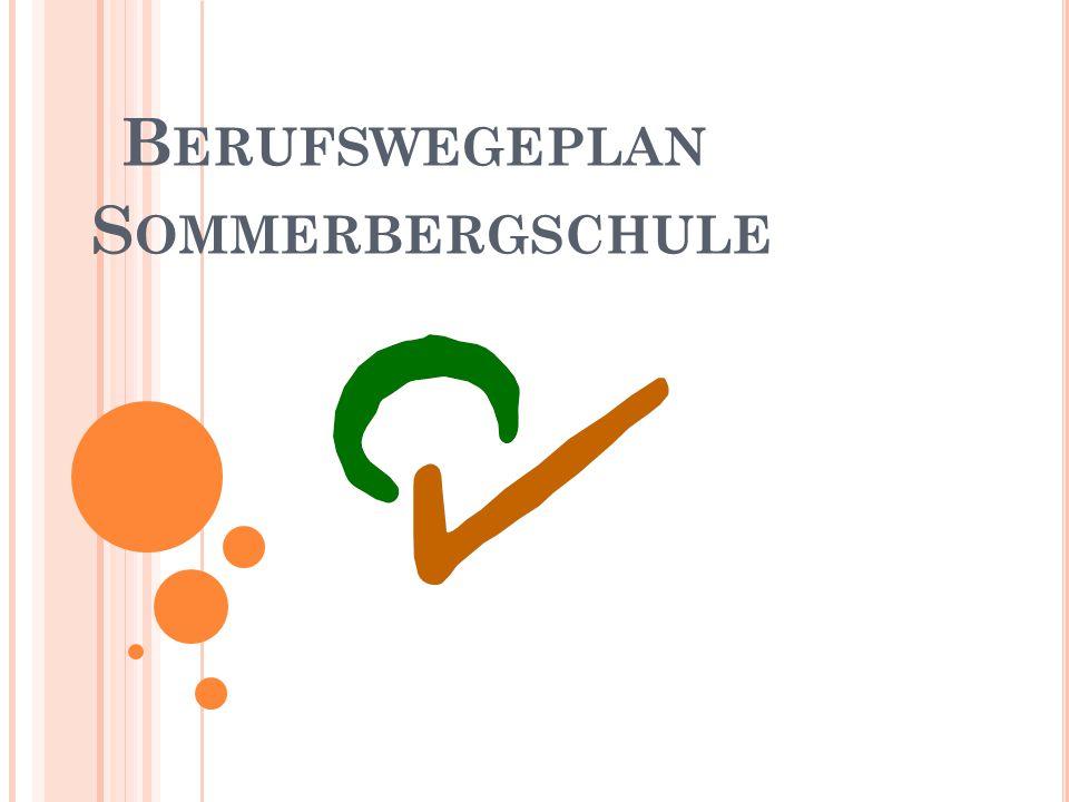 Berufswegeplan Sommerbergschule