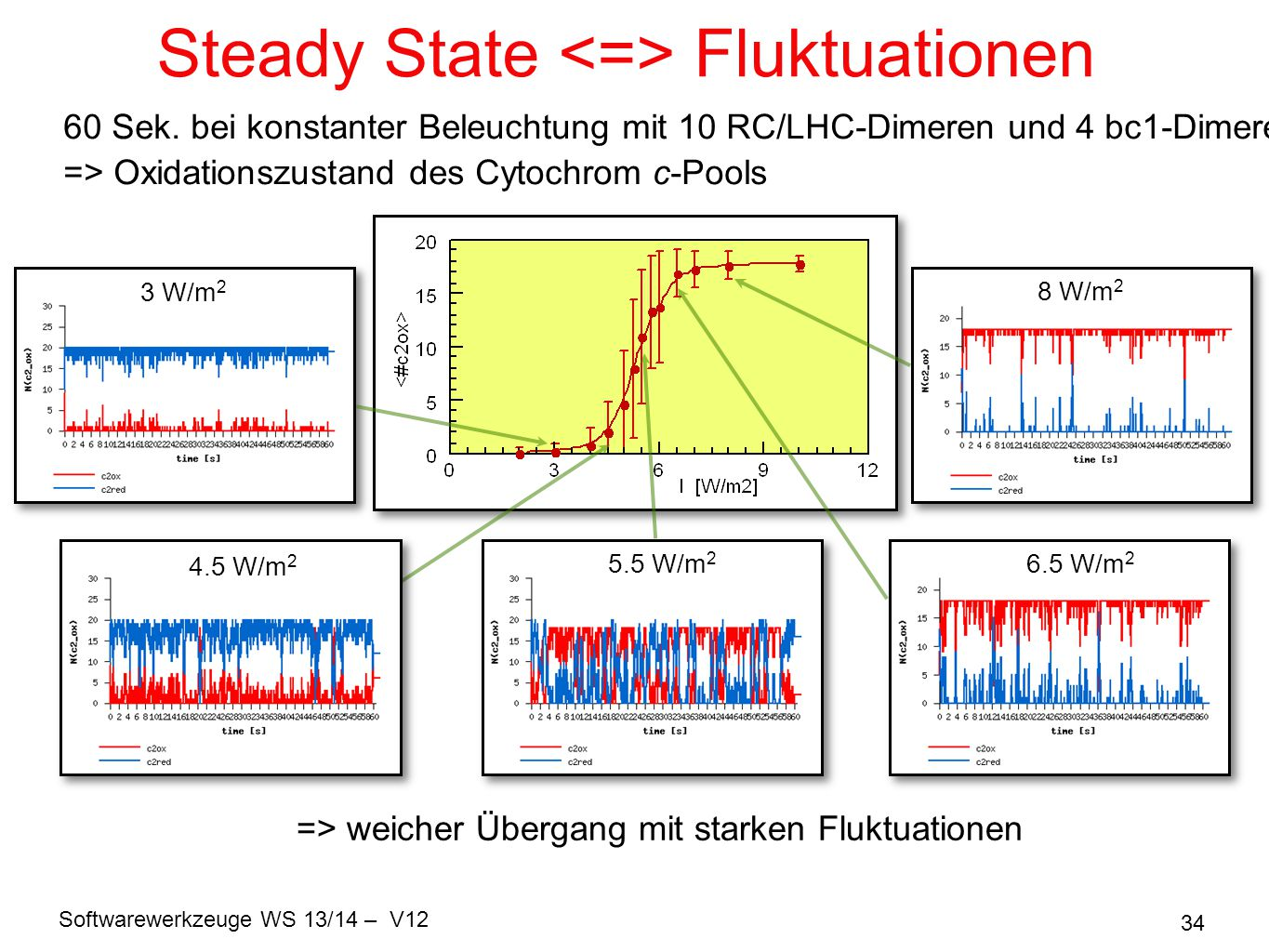 Steady State <=> Fluktuationen