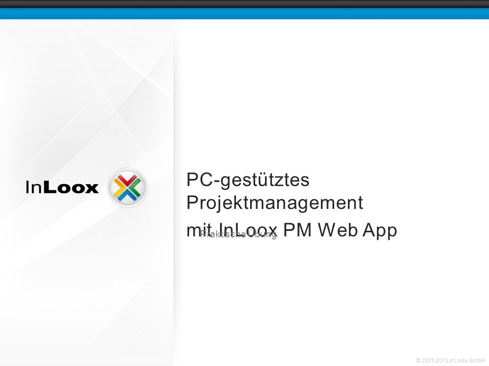 PC-gestütztes Projektmanagement mit InLoox PM Web App