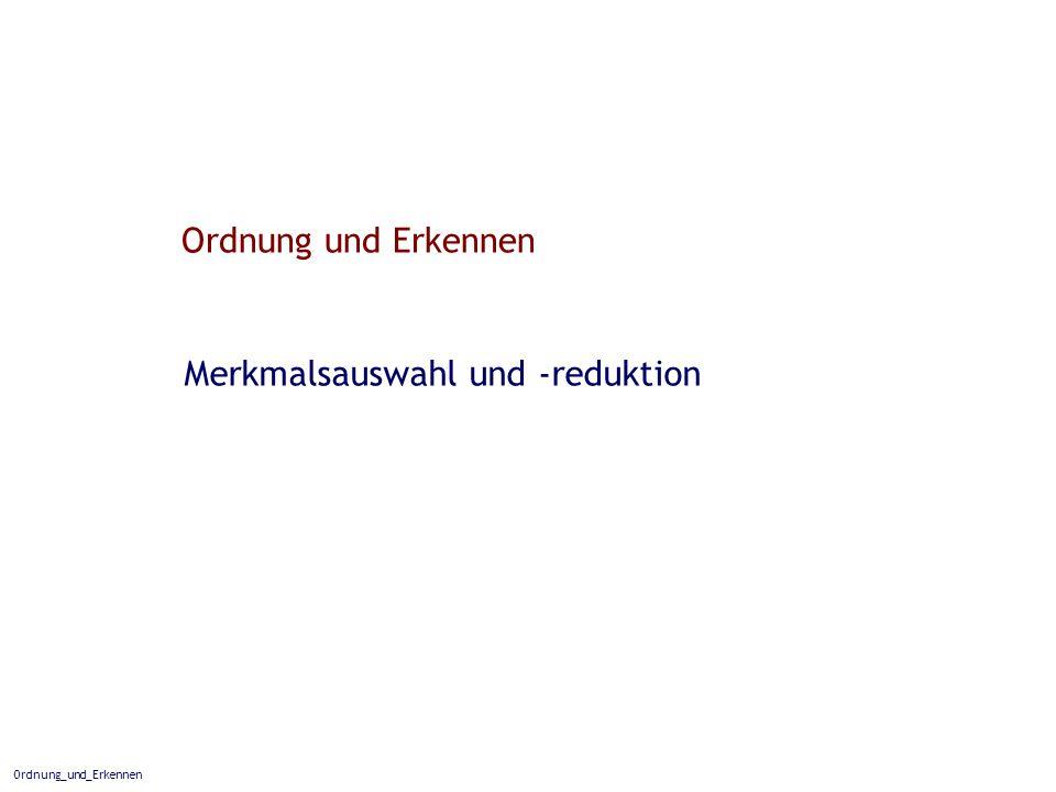 Ordnung_und_Erkennen