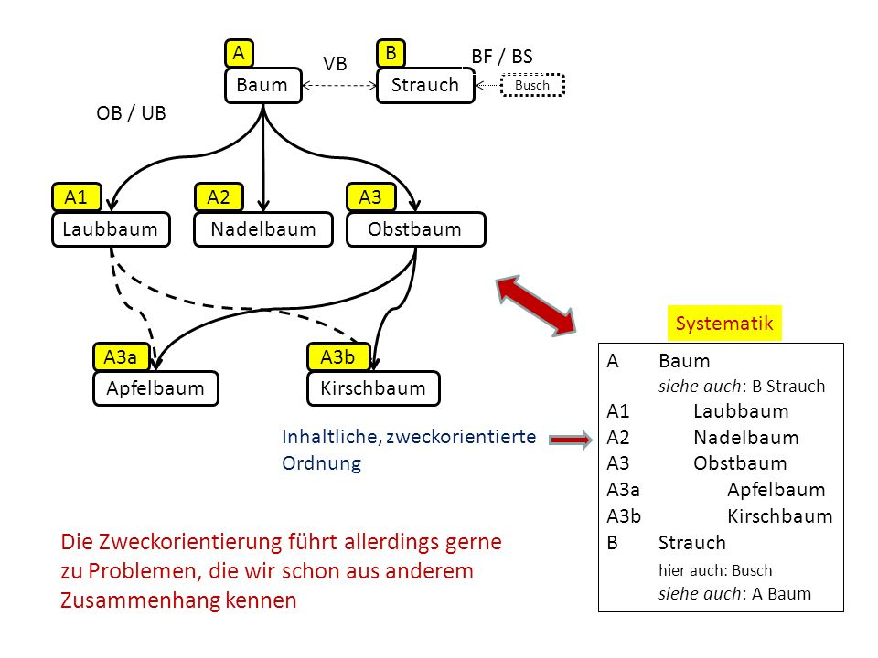 A B. BF / BS. VB. Baum. Strauch. Busch. OB / UB. A1. A2. A3. Laubbaum. Nadelbaum. Obstbaum.